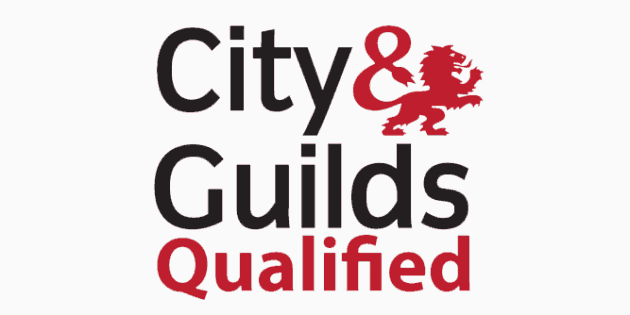 city and guilds qualified electrician