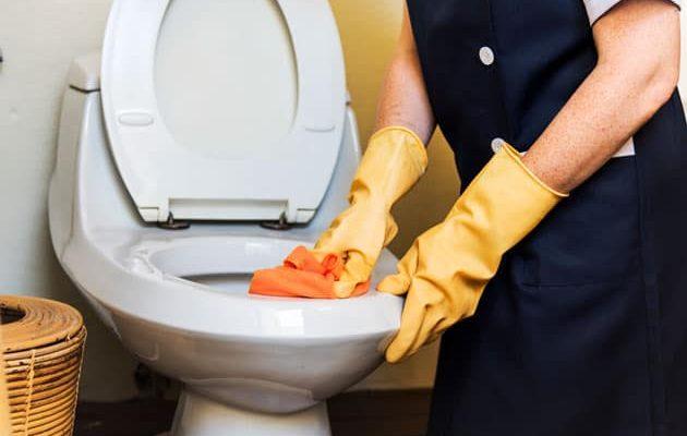 toilet-bowl-wont-flush